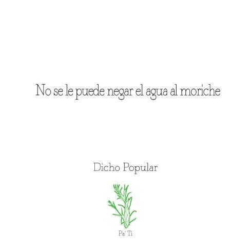 Dicho-moriche