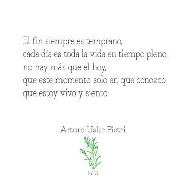 Quote---Arturo-Uslar-Pietri_6