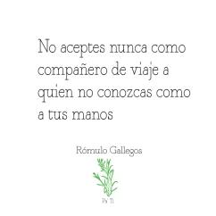 Quote-Rómulo-Gallegos_1