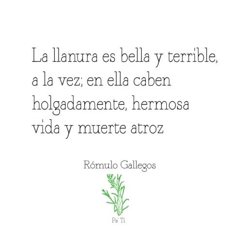 Quote-Rómulo-Gallegos_2