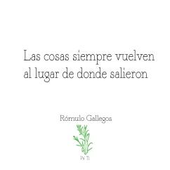 Quote-Rómulo-Gallegos_3