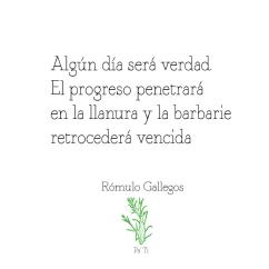 Quote-Rómulo-Gallegos_4