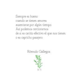 Quote-Rómulo-Gallegos_5